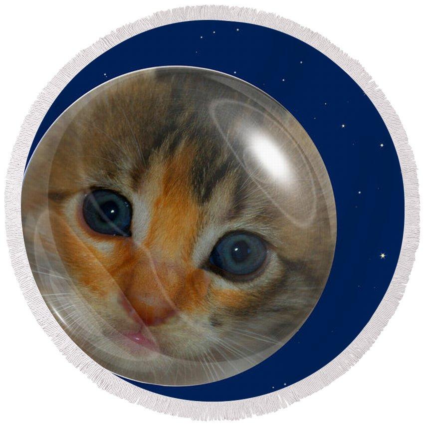 Claudia's Art Dream Round Beach Towel featuring the photograph Cat Planet by Claudia Ellis