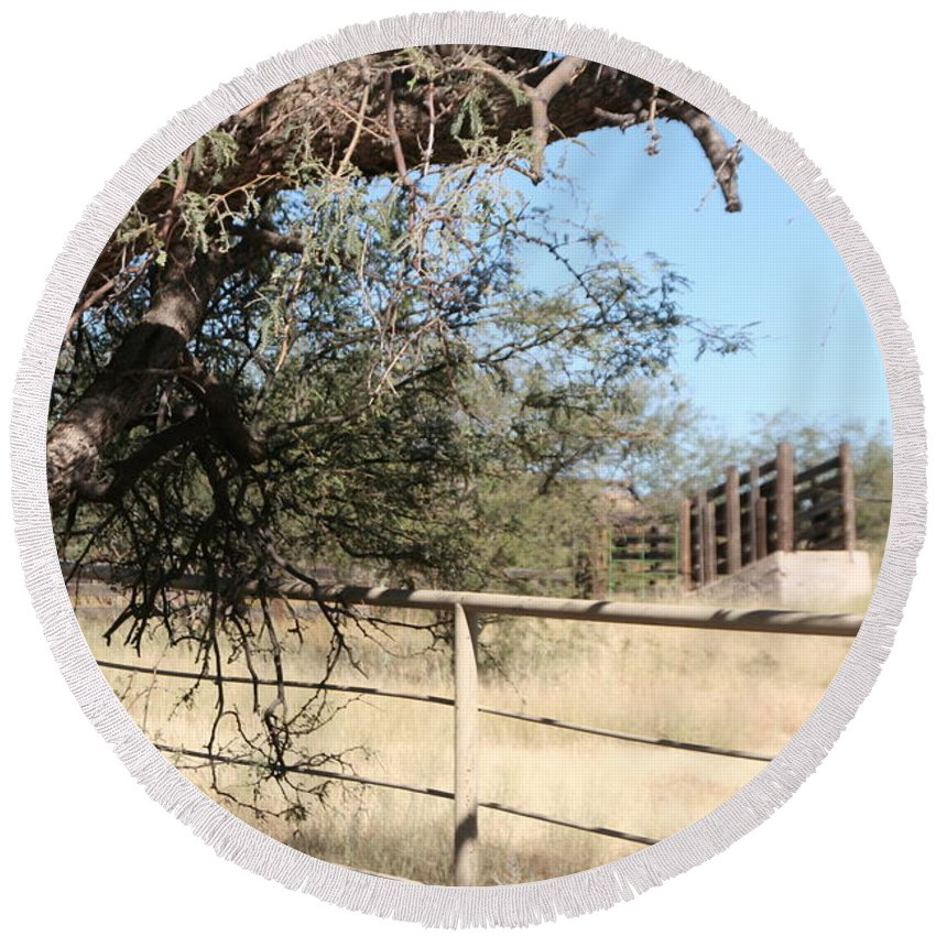 Arizona Round Beach Towel featuring the photograph Cattle Ramp by David S Reynolds