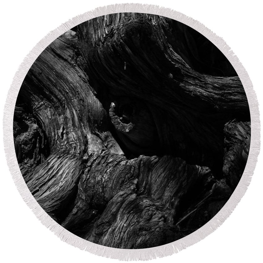 Black Round Beach Towel featuring the photograph Cedar Burl Number Two by Phil Penne