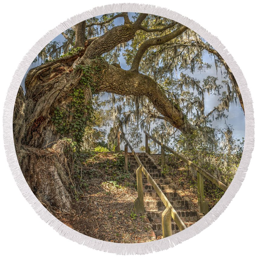 Live Oak Tree Round Beach Towel featuring the photograph Charleston Oak Stairway by Dale Powell