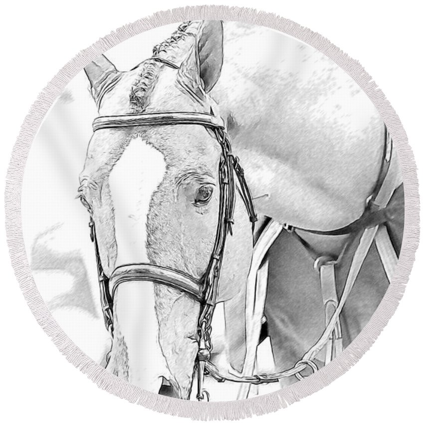 Horse Round Beach Towel featuring the photograph Chestnut by Alice Gipson