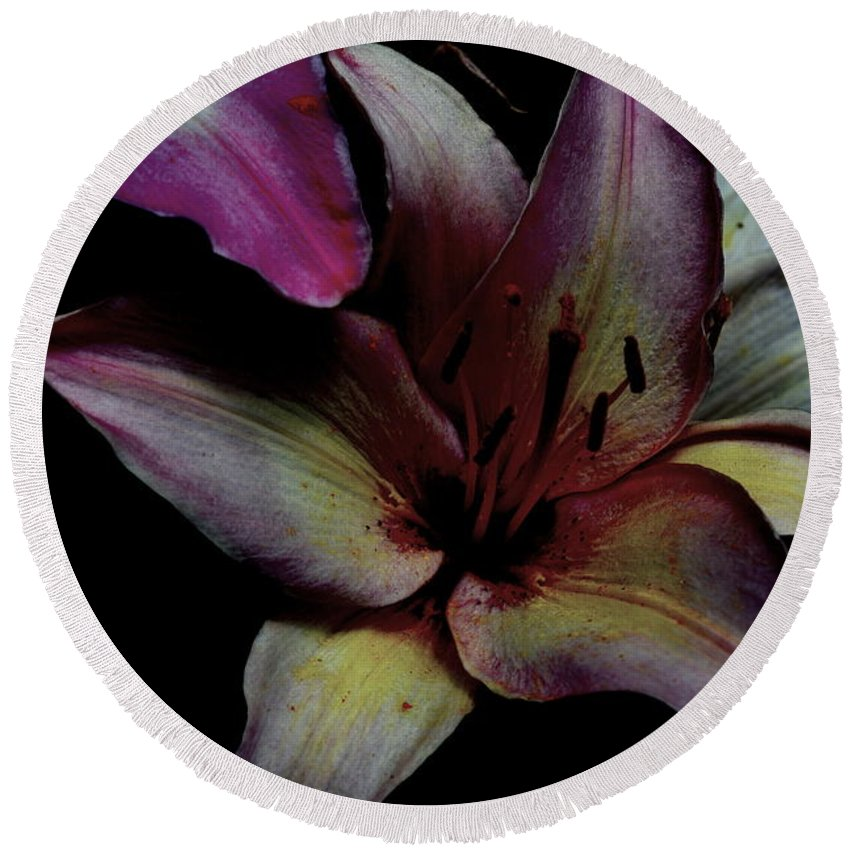 Chiaroscuro Round Beach Towel featuring the photograph Chiaroscuro Lilies by Kathy Barney