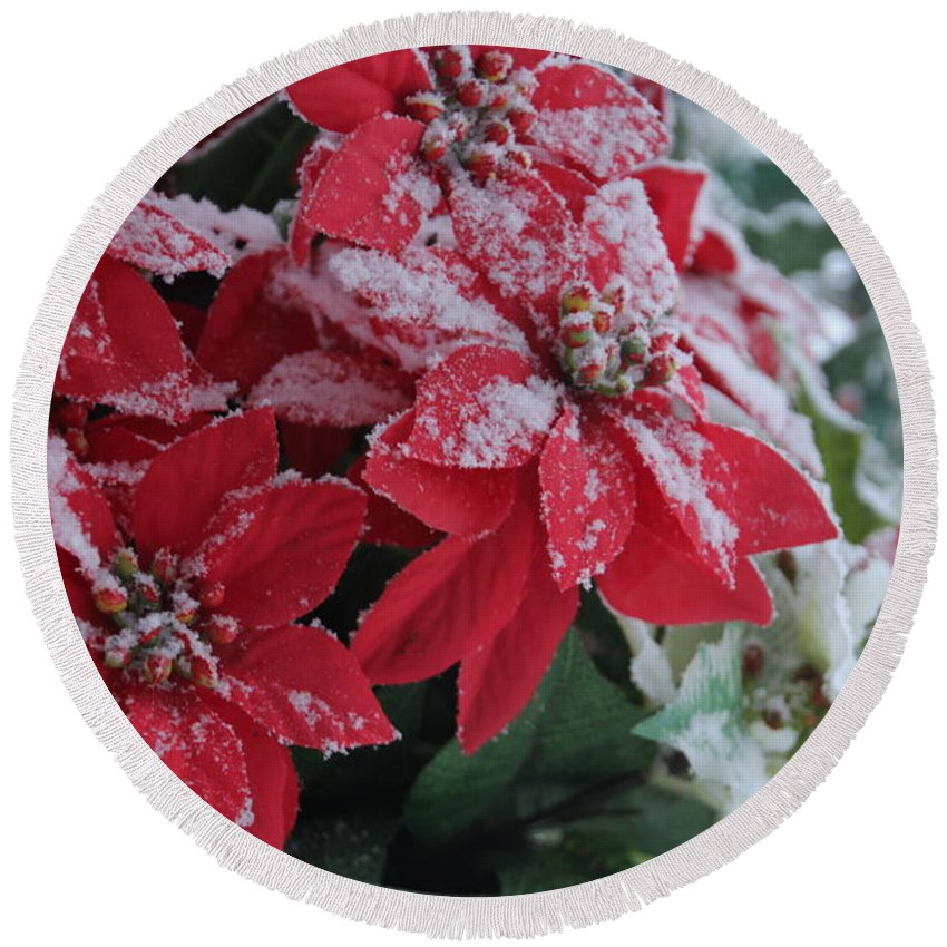 Poinsettia Round Beach Towel featuring the photograph Christmas Poinsettia Flowers by Valerie Collins