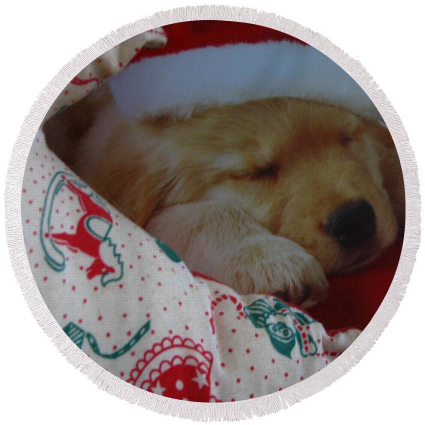 Patzer Round Beach Towel featuring the photograph Christmas Pup by Greg Patzer