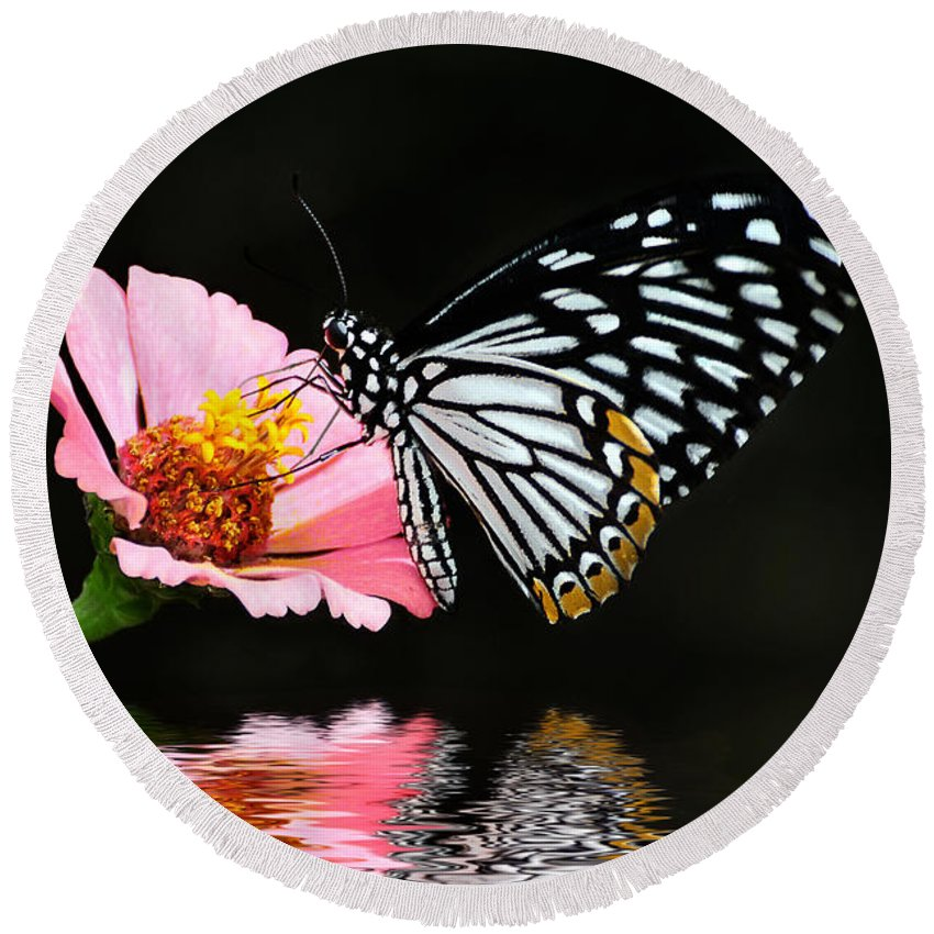 Butterfly Round Beach Towel featuring the photograph Cliche by Lois Bryan