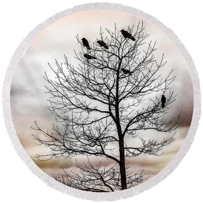 Cloudy Day Round Beach Towel featuring the photograph Cloudy Day Blackbirds by Roxy Hurtubise