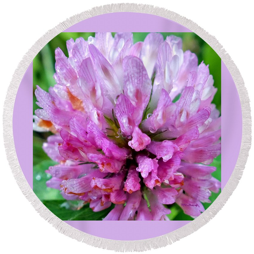 Duane Mccullough Round Beach Towel featuring the photograph Clover Flower Upclose by Duane McCullough