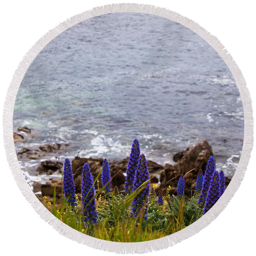 2012 Round Beach Towel featuring the photograph Coastal Cliff Flowers by Melinda Ledsome