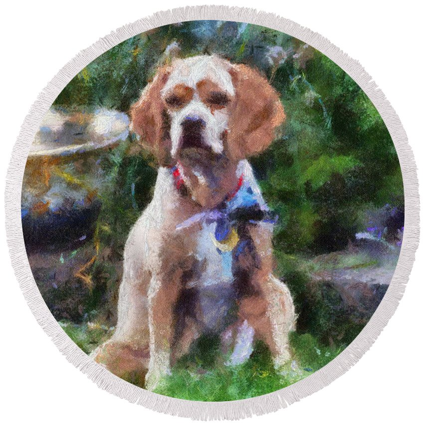 Spaniel Round Beach Towel featuring the photograph Cocker Spaniel Outside 03 by Thomas Woolworth
