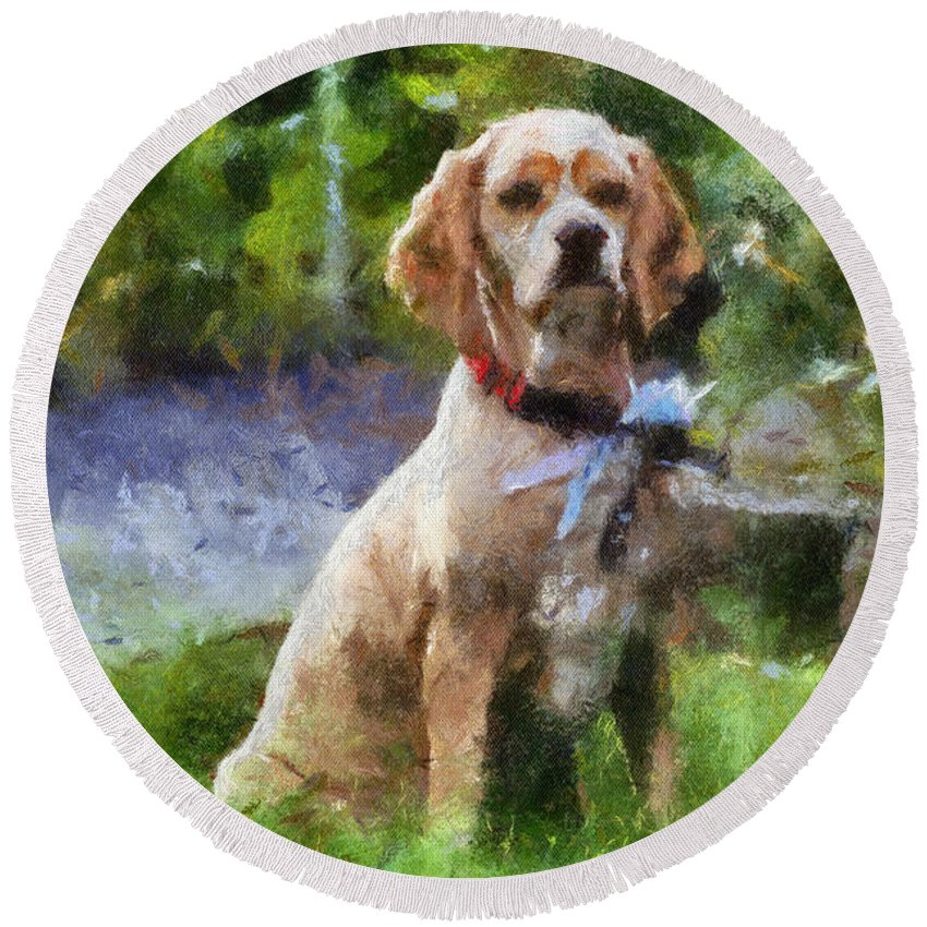 Spaniel Round Beach Towel featuring the photograph Cocker Spaniel Outside 04 by Thomas Woolworth