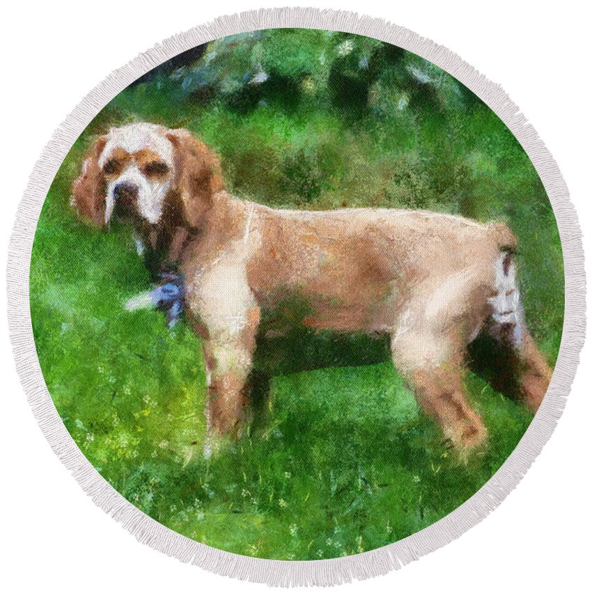 Spaniel Round Beach Towel featuring the photograph Cocker Spaniel Outside 07 by Thomas Woolworth
