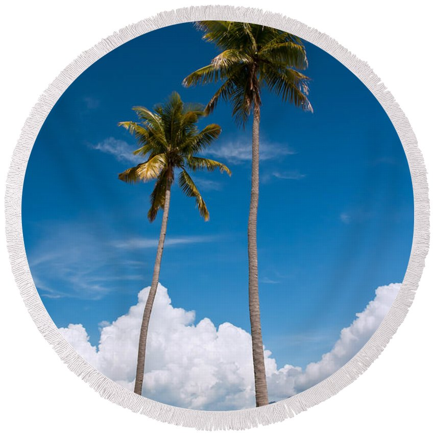 Coconut Round Beach Towel featuring the photograph Coconut Trees by Kim Pin Tan