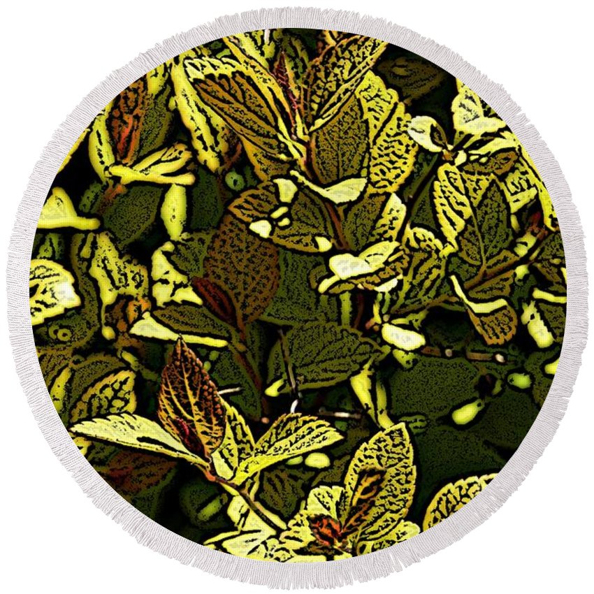 Plant Round Beach Towel featuring the photograph Color Engraving 1 by Joe Faherty