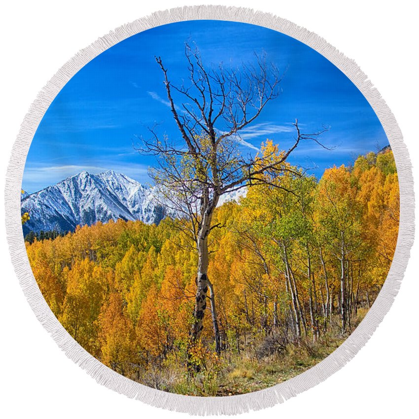 Aspens Round Beach Towel featuring the photograph Colorado Fall Foliage Back Country View by James BO Insogna