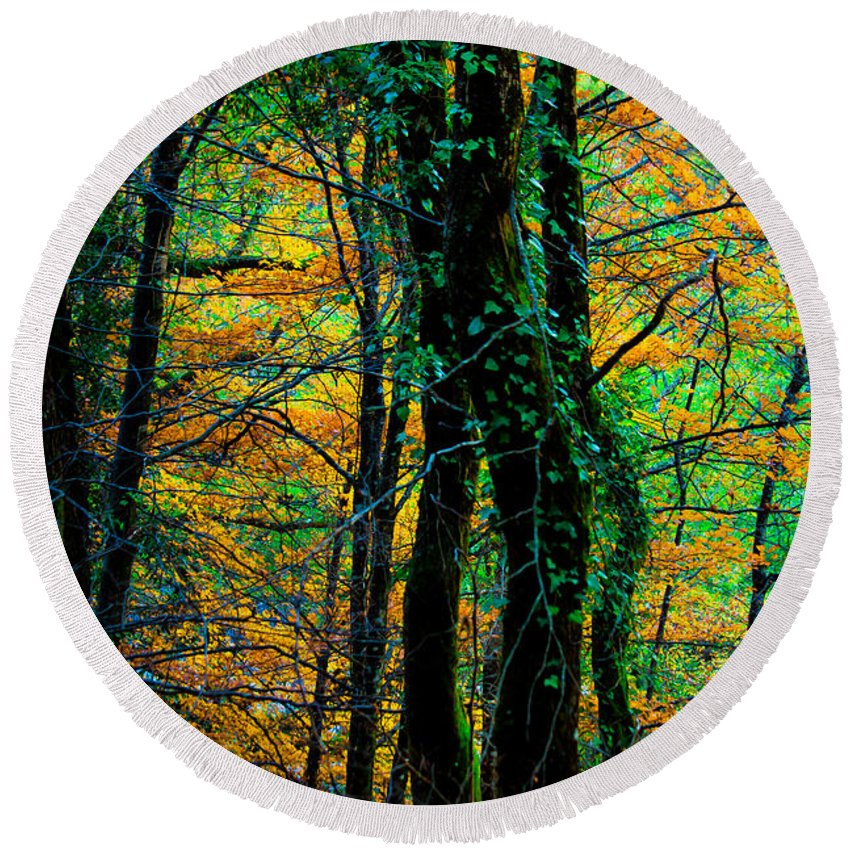 Ight Round Beach Towel featuring the photograph Colorful Autumn by Edgar Laureano