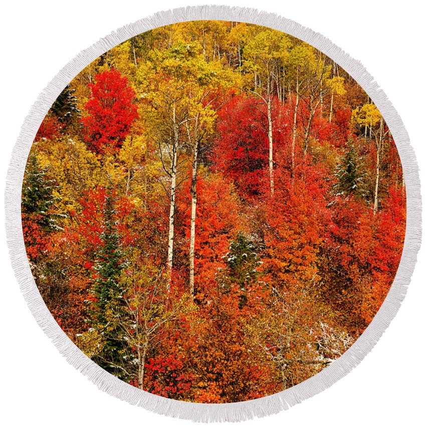 Autumn Round Beach Towel featuring the photograph Colors Of Autumn by Greg Norrell