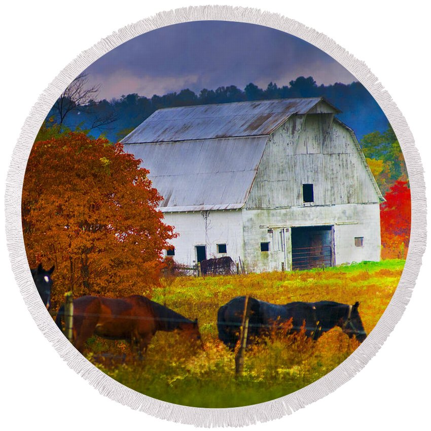Horse Round Beach Towel featuring the photograph Coming To The Barn by Randall Branham