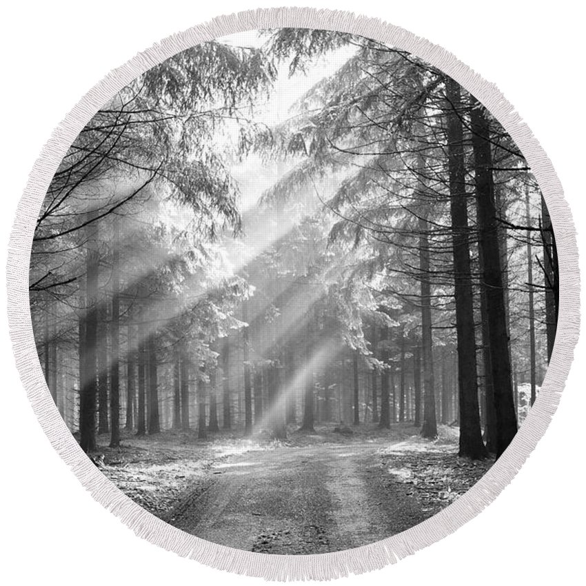 Forest Round Beach Towel featuring the photograph Coniferous Forest In Early Morning by Michal Boubin