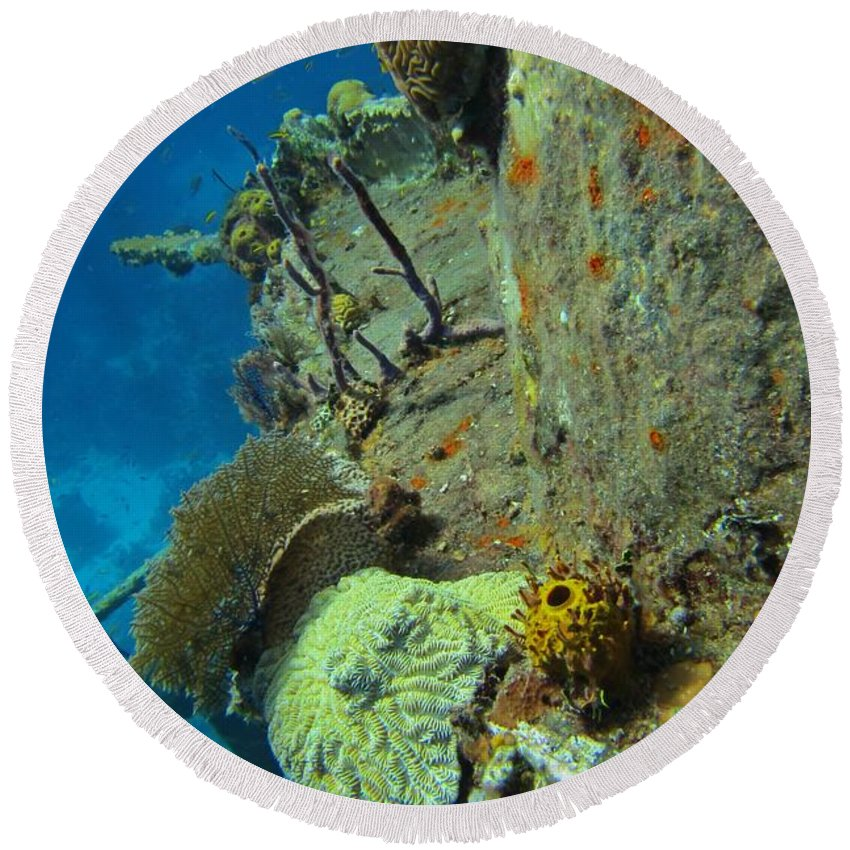 Coral Reef Art Prints Round Beach Towel featuring the photograph Coral Growth On A Ship Wreck by JohN Malone Halifax Photographer