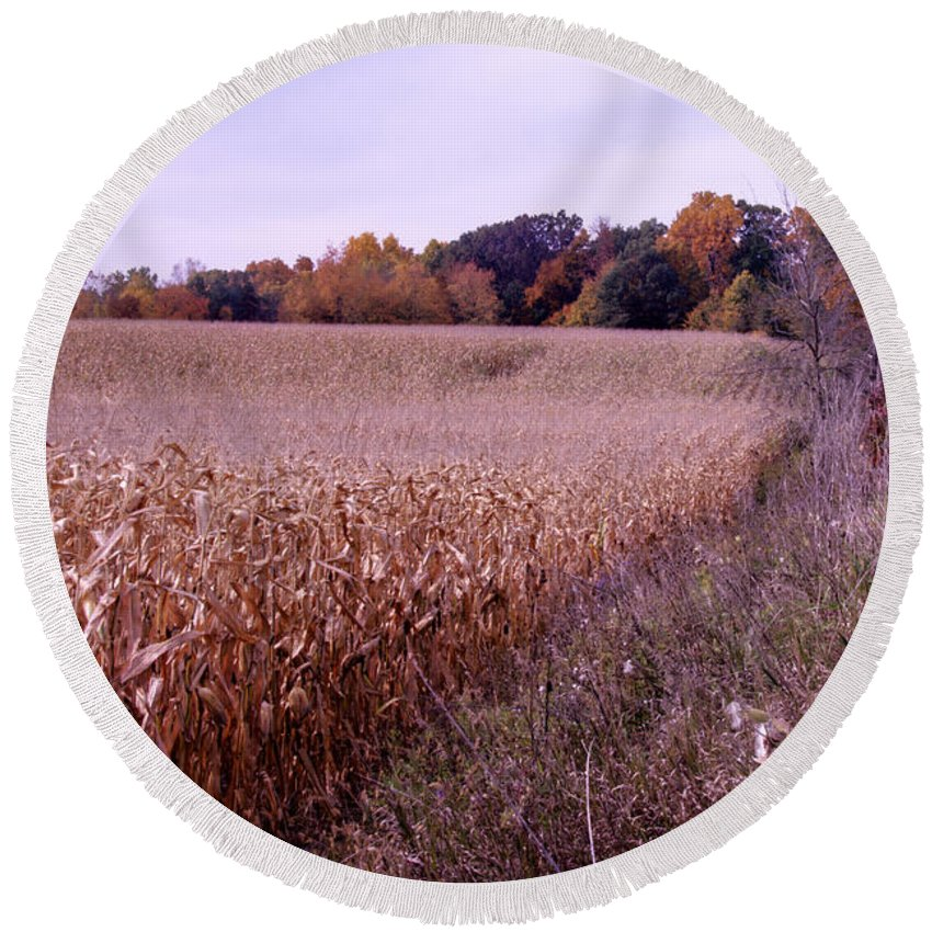 Fall Round Beach Towel featuring the photograph Corn Field In The Fall by Paul Cannon
