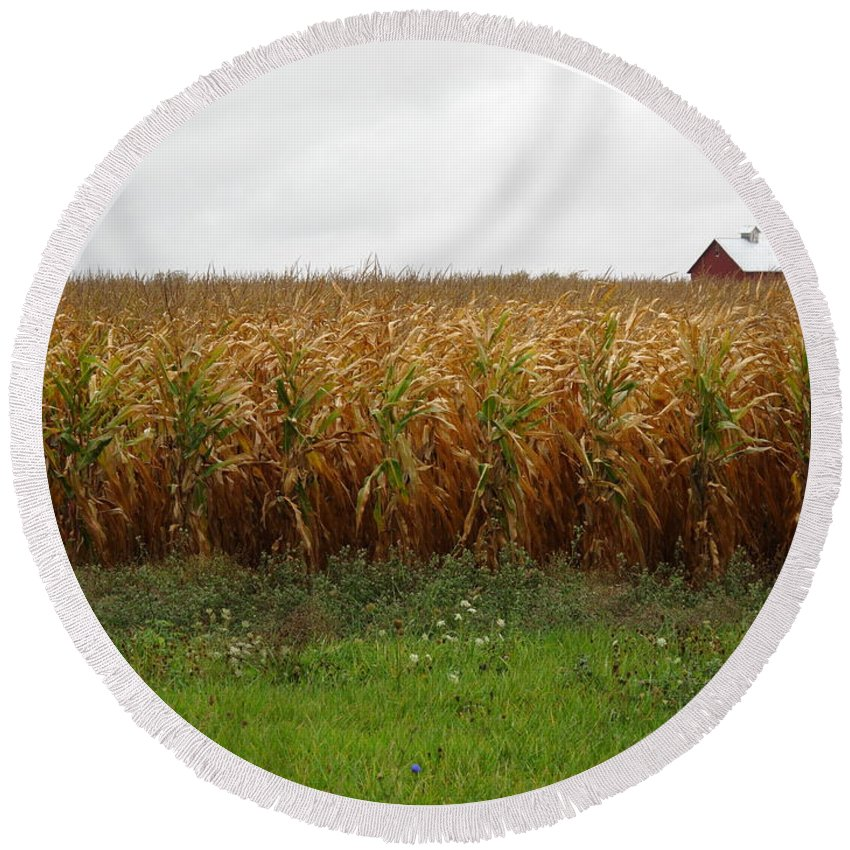 Agriculture Round Beach Towel featuring the photograph Cornfield And Farmhouse by Frank Romeo