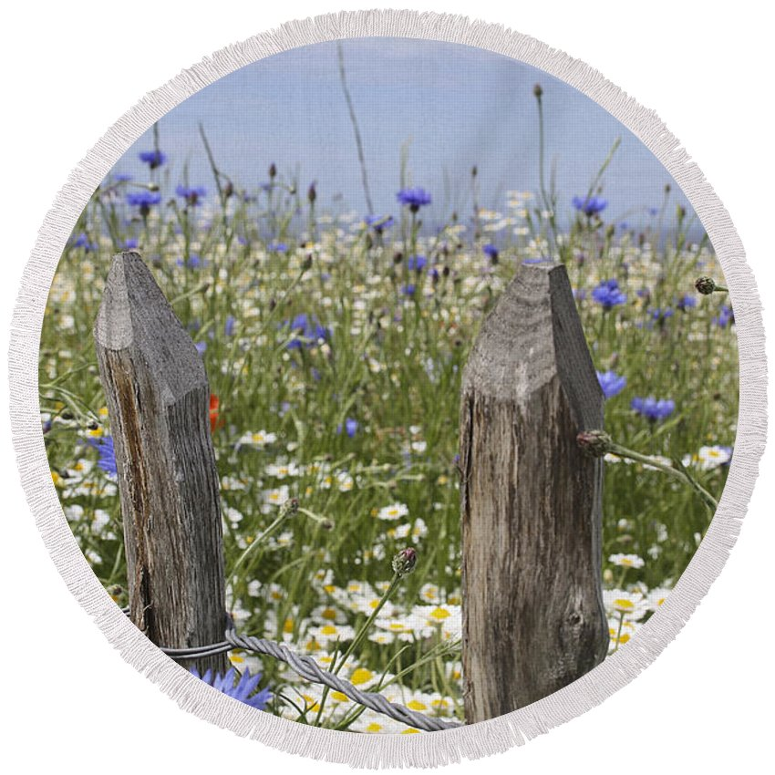 Wildflowers Round Beach Towel featuring the photograph Cornflower Meadow by Jacqui Hall