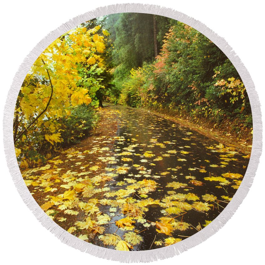 Plant Round Beach Towel featuring the photograph Country Road by Ron Sanford