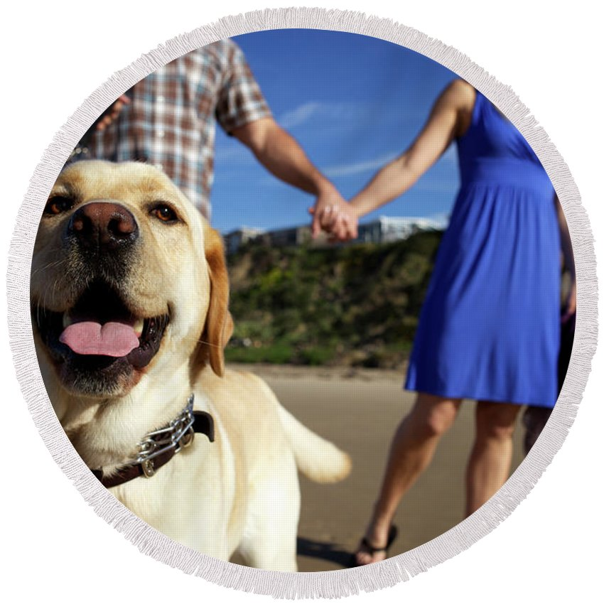30-34 Years Round Beach Towel featuring the photograph Couple Take Their Dogs For A Walk by Priscilla Gragg