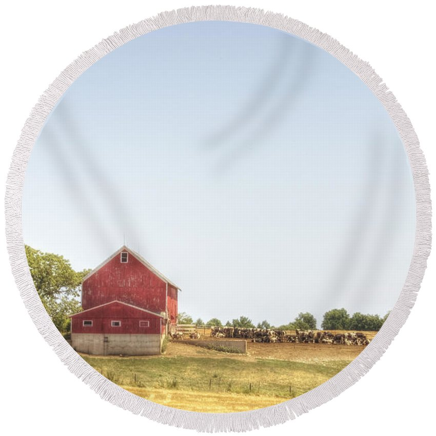 Field; Pasture; Farm; Grasses; Wheat; Plowed; Red; Barn; Farm; Outside; Outdoors; Day; Nature; Sky; Rural; Land; Lines; Red; Peeling; Wood; Worn; Weathered; Old; Vintage; Cows; Animals; Dairy; Meat Round Beach Towel featuring the photograph Cow Pasture by Margie Hurwich