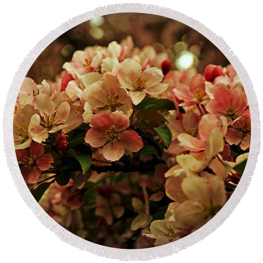 Crabapple In Bloom Round Beach Towel featuring the photograph Crabapple In Bloom by Mary Machare
