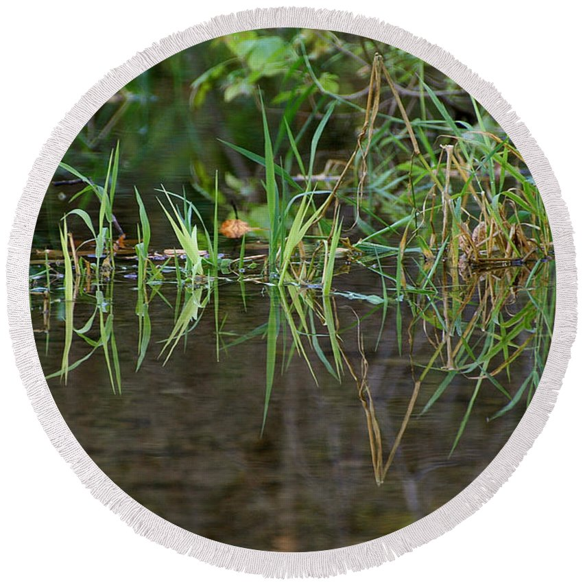 Horticulture Round Beach Towel featuring the photograph Creek Grass by Susan Herber
