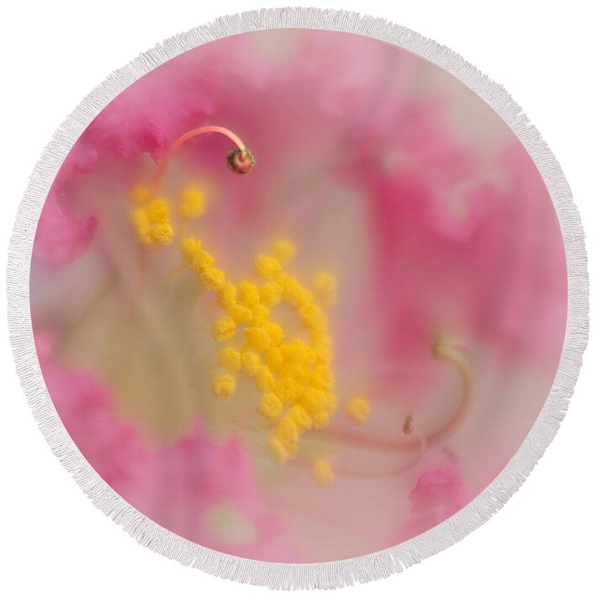 Bloom Round Beach Towel featuring the photograph Crepe Myrtle II by David and Carol Kelly