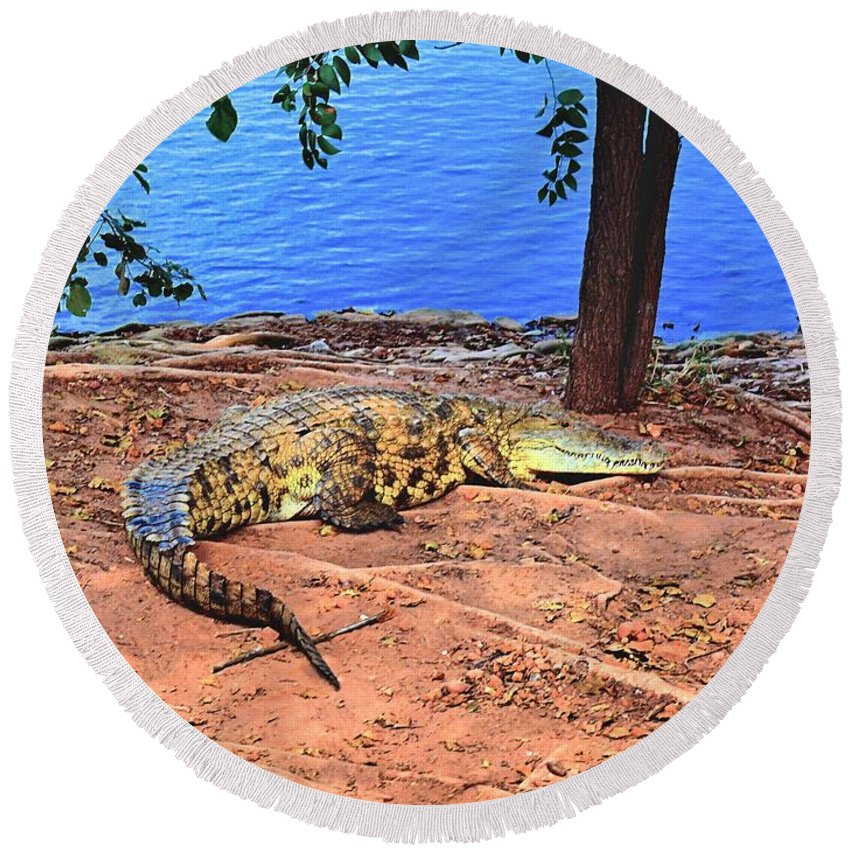 Africa Round Beach Towel featuring the photograph Croc Hdr by Martin Michael Pflaum