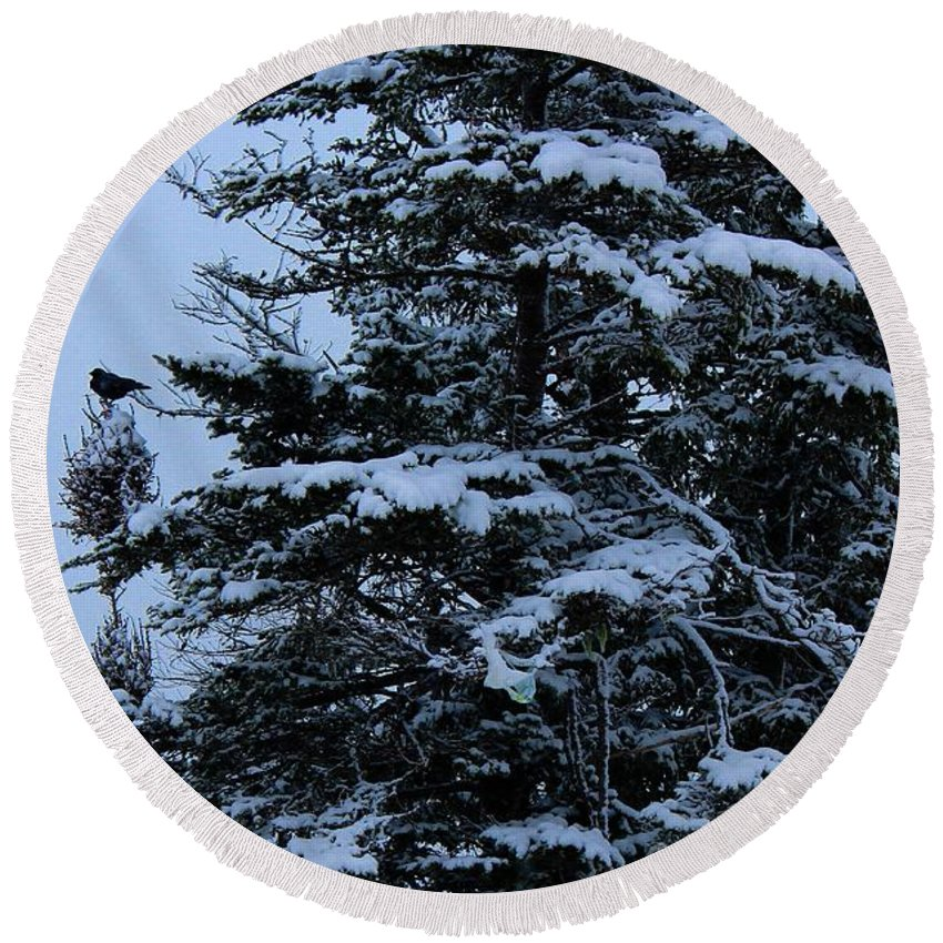 Crows Perch Round Beach Towel featuring the photograph Crows Perch - Snowstorm - Snow - Tree by Barbara Griffin