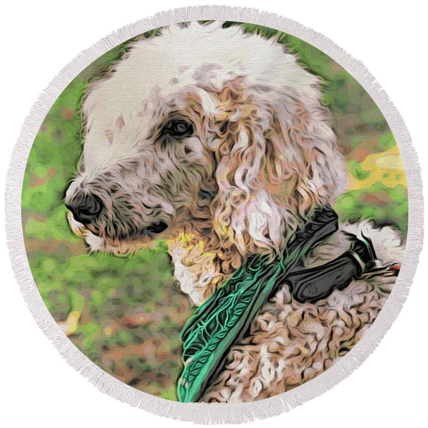Dog Round Beach Towel featuring the photograph Curly White Dog by Alice Gipson