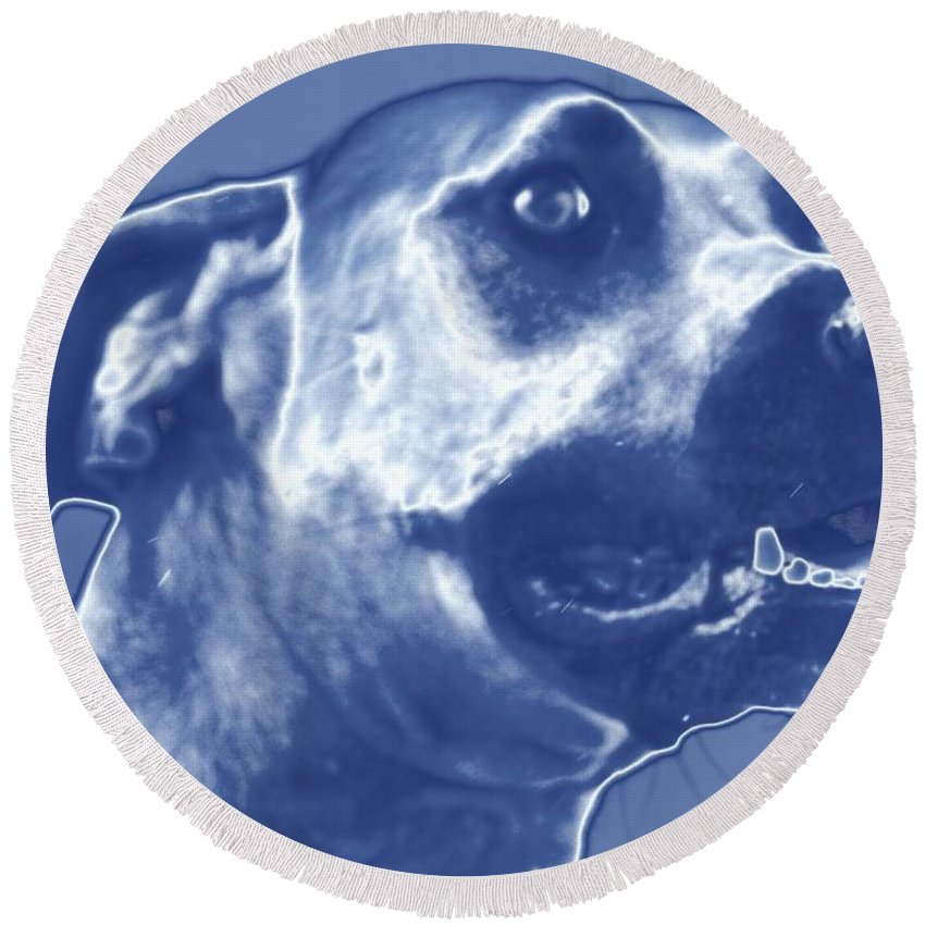 Cyanotype Dog Portrait Alicegipsonphotographs Round Beach Towel featuring the photograph Cyanotype Dog by Alice Gipson