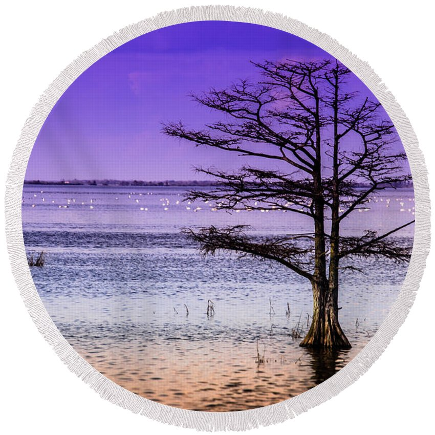 Cypress Round Beach Towel featuring the photograph Cypress Purple Sky 2 by Scott Hervieux