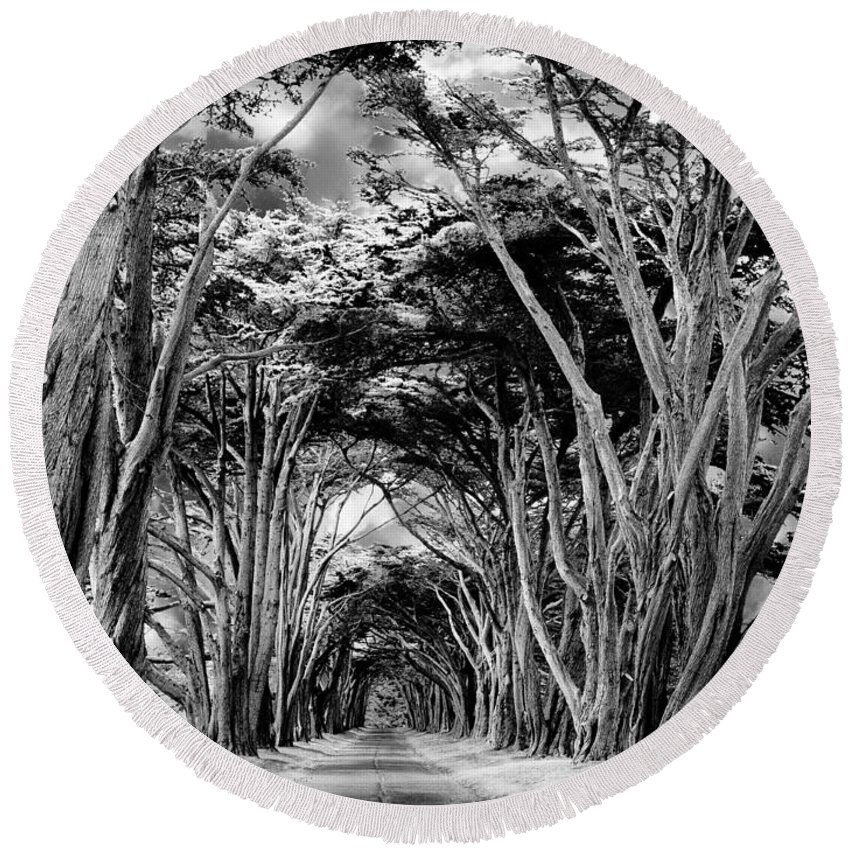 Cypress Trees Round Beach Towel featuring the photograph Cypress Tree Tunnel Point Reyes by Dominic Piperata