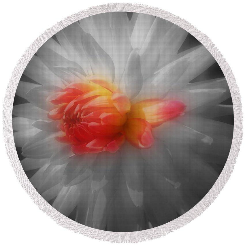 Dahlia Round Beach Towel featuring the photograph Dahlia Flower Beauty by Smilin Eyes Treasures