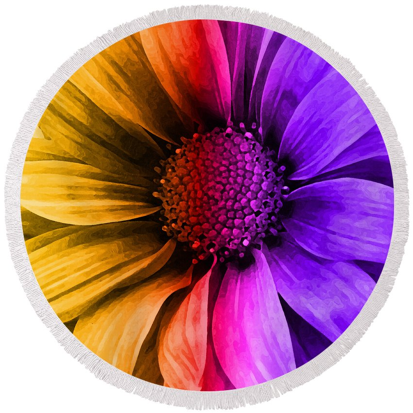 Daisy Round Beach Towel featuring the mixed media Daisy Daisy Yellow To Purple by Angelina Vick