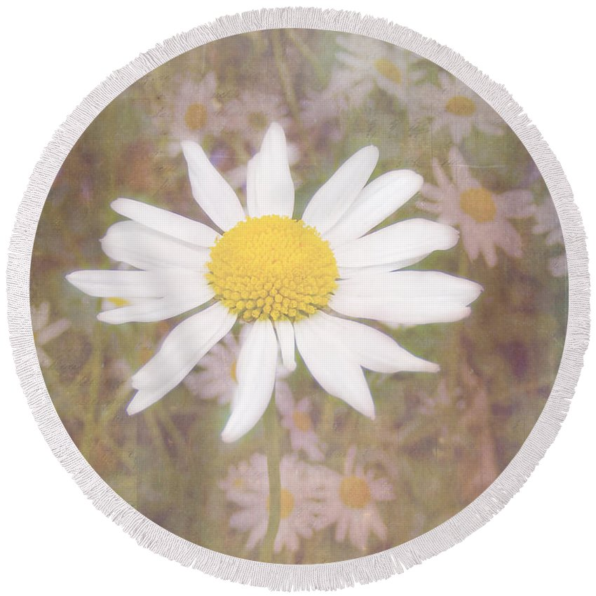 Daisy Textured Round Beach Towel featuring the photograph Daisy Textured by Cynthia Woods
