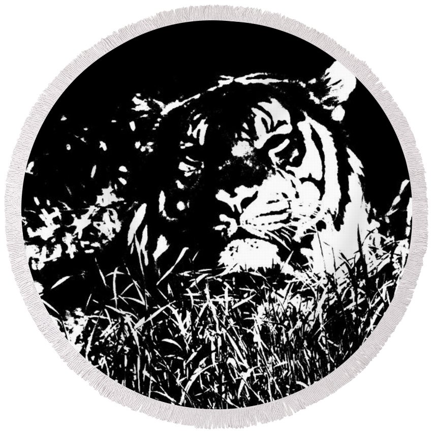 Tiger Round Beach Towel featuring the photograph Danger In The Shadows by Myrna Bradshaw