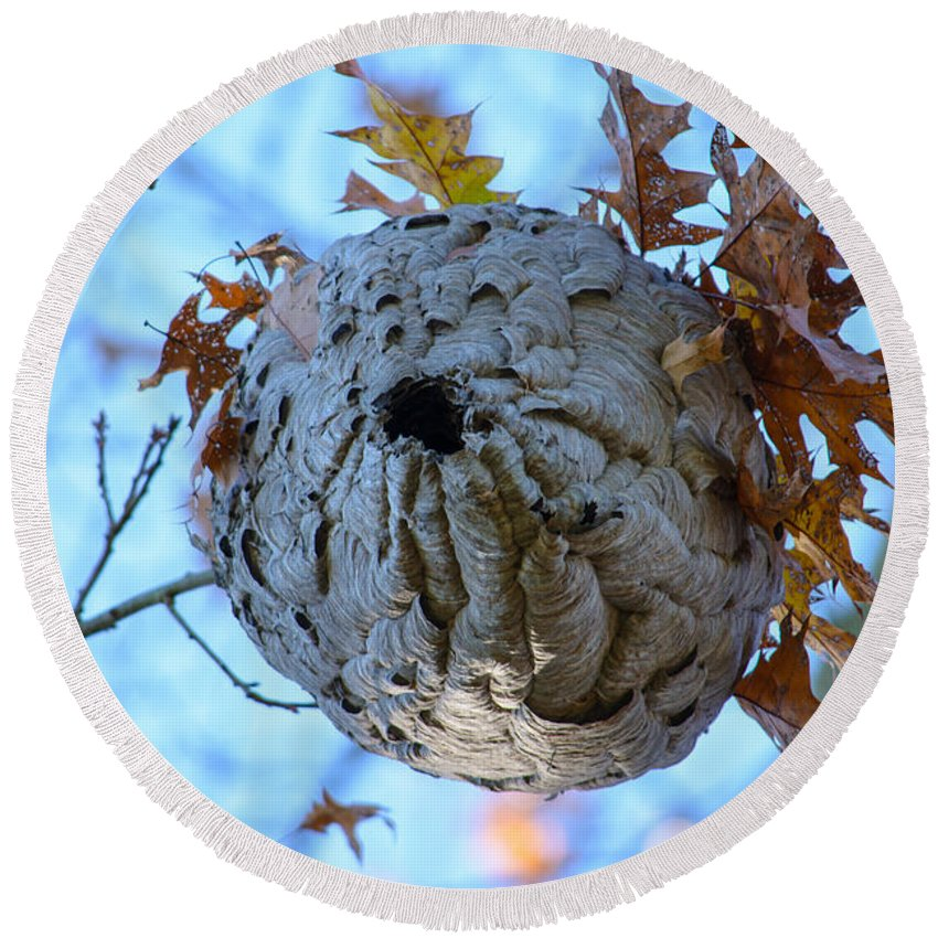 Wasp Nest Round Beach Towel featuring the photograph Danger Zone by Tikvah's Hope