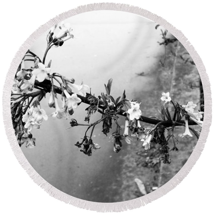 Flower Round Beach Towel featuring the photograph Dark Flower by Image-in Photoart