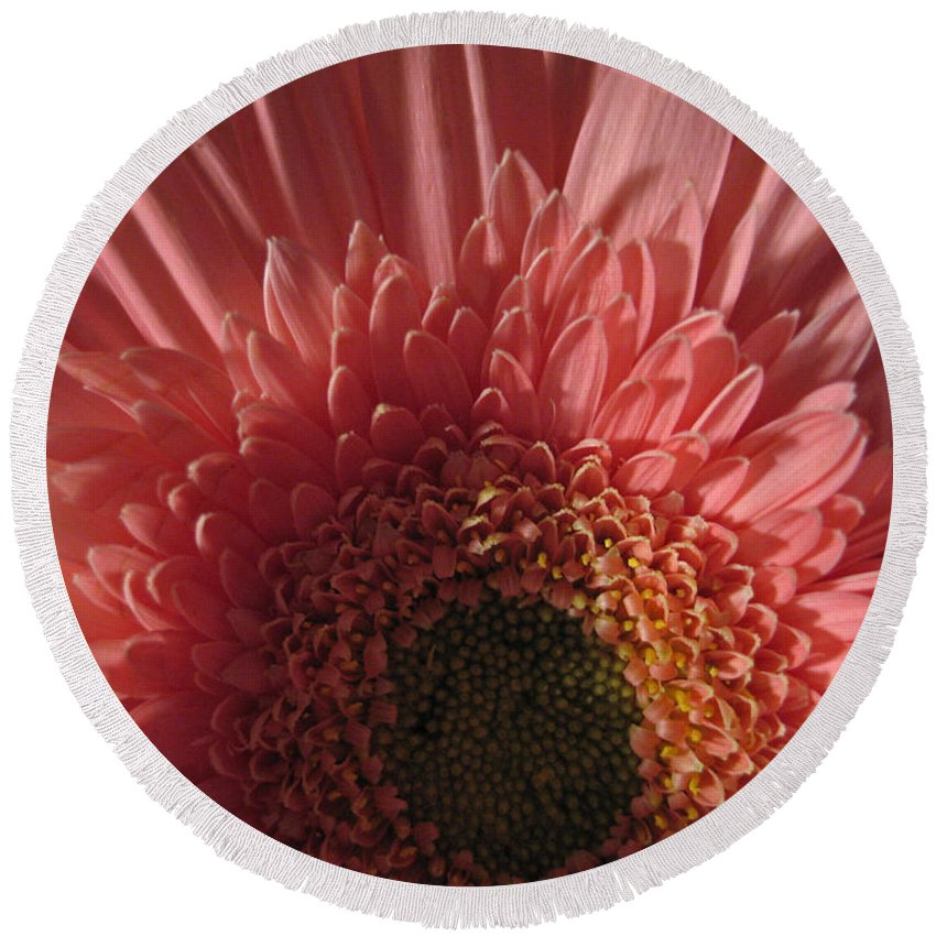 Flower Round Beach Towel featuring the photograph Dark Radiance by Ann Horn
