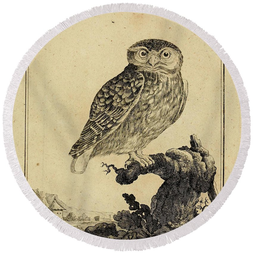 Owl Round Beach Towel featuring the drawing Das Kautzgen by Philip Ralley