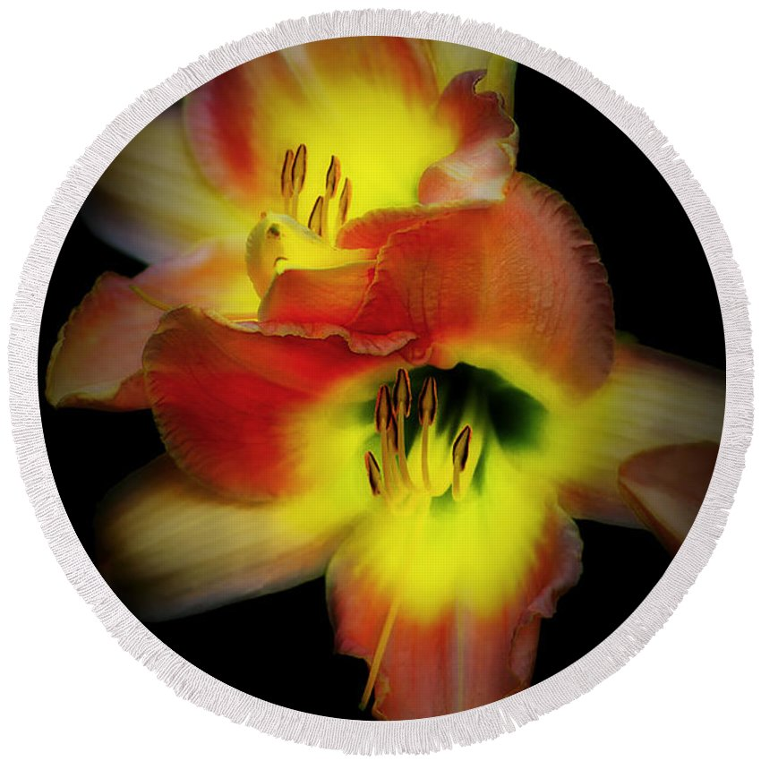 Day Lily Round Beach Towel featuring the photograph Day Lily On Black by Mike Nellums