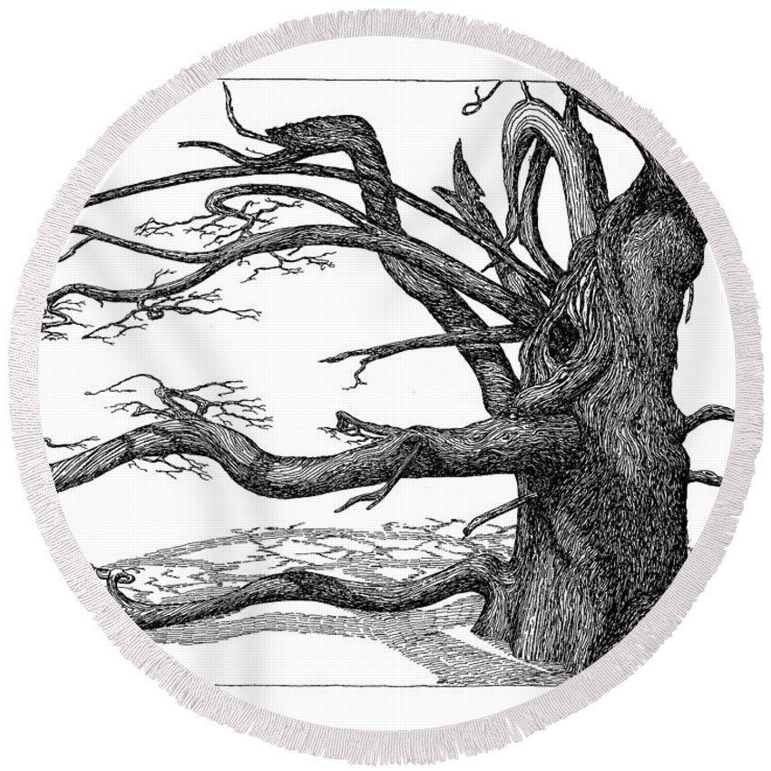 Nature Round Beach Towel featuring the drawing Dead Tree by Daniel Reed