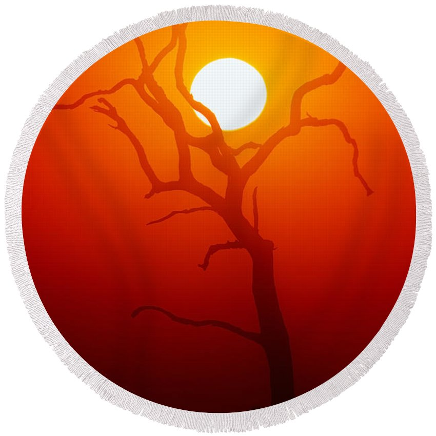 Tree Round Beach Towel featuring the photograph Dead Tree Silhouette And Glowing Sun by Johan Swanepoel