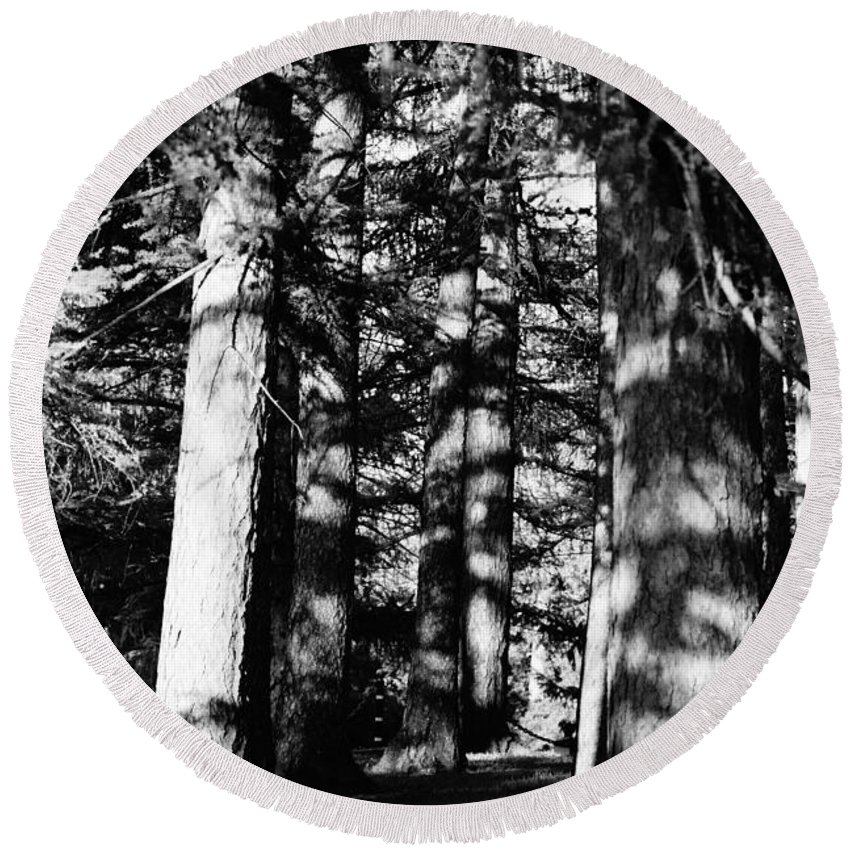 Trees Round Beach Towel featuring the photograph Deep In The Woods by Jeffery L Bowers